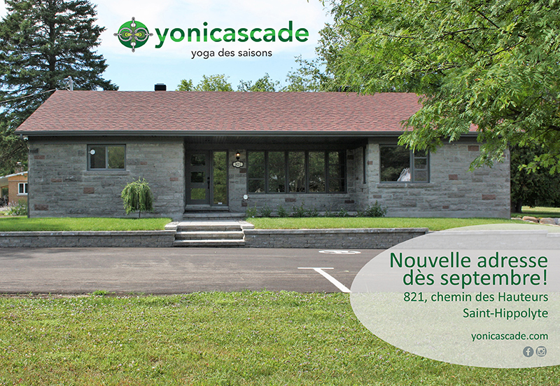 nouvelle adresse yonicascade